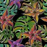 Vector van het krabbel de bloemen tropische naadloze patroon met krabbels kleurrijke bloemen, monsterabladeren op zwarte achtergr vector illustratie