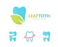 Vector van tand en bladembleemcombinatie Tand en ecosymbool of pictogram Unieke kliniek en organisch logotypeontwerp Stock Afbeelding