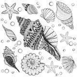 Vector vastgestelde Shells, zentangle seeshell voor volwassen antispanning Colo Royalty-vrije Stock Afbeeldingen