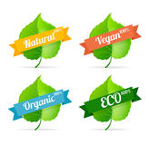 Vector vegan shop labels set Stock Photos