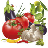Vector vegetable mix Royalty Free Stock Image