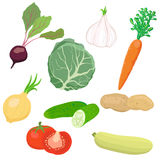 Vector vegetable set Stock Photos