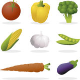 Vector vegetables. Set of various vector vegetables Royalty Free Stock Photo