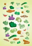Vector vegetables. There are vector vegetables,vegetarian will love it Stock Image