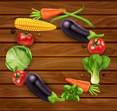 Vector vegetables in a circle (tomato, cabbage, eggplant, pepper Stock Image