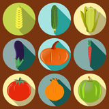 Vector_vegetables_flat_icons_set_for_Web_and_Mobile_Applications 免版税图库摄影