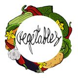 Vector vegetables icons set in a cartoon style stacked in a round wreath. Collection farm product for restaurant menu Royalty Free Stock Image