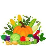 Vector vegetables illustration vector illustration