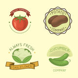 Vector vegetables label template icon. Stock Photography