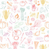 Vector vegetables pattern. Vegetables seamless background. Stock Photography