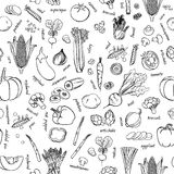 Vector vegetables pattern. Vegetables seamless background. Royalty Free Stock Images