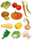 Vector vegetables set. Food ingredients Royalty Free Stock Images