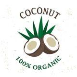 Vector verpakkend ontwerpelement - kokosnotenfruit royalty-vrije illustratie