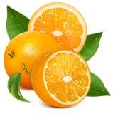 Verse rijpe sinaasappelen met bladeren. Stock Afbeeldingen