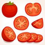 Vector verse tomaat Gesneden, gehele, half rode tomaten Stock Afbeeldingen