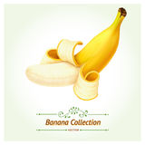 Vector version of Banana fruit. Royalty Free Stock Image