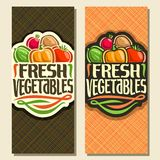 Vector vertical banners for Fresh Vegetables. Handwritten original font for title text fresh vegetables, sign with pile of organic vegetables on geometric Stock Image
