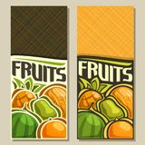 Vector vertical banners for Fruits. With copy space: pineapple, yellow melon, green pear, juicy watermelon, orange, veg fruit mix, layout with original font for Stock Photos