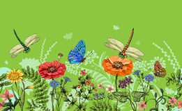 Vector vertical border with dragonflies, butterflies, flowers, grass and plants. Summer style. Seamless nature border Stock Photo