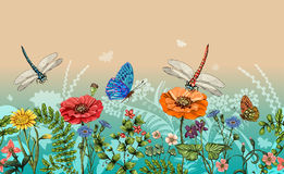 Vector vertical border with dragonflies, butterflies, flowers, grass and plants. Summer style. Seamless nature border Royalty Free Stock Photos