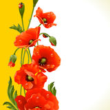 Vector vertical frame with poppies and ladybugs Royalty Free Stock Photos