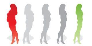 Vector vet te zwaar zwaarlijvig wijfje versus slank geschikt gezond lichaam vector illustratie