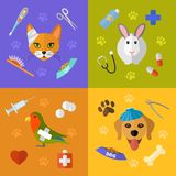 Veterinary icons set. Vector veterinary icons set. Cat dog fish parrot doctors pets medical tools Royalty Free Stock Photo