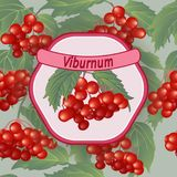 Vector viburnum label Royalty Free Stock Photos