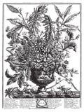 Vector Victoriaans bloemboeket in vaas met tekst Stock Afbeelding