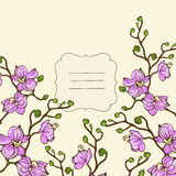 Vector vignette background with pink orchid flowers Royalty Free Stock Images