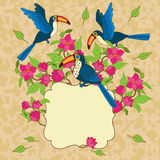 Vector vignette with birds and flowers Royalty Free Stock Photography