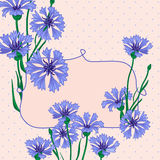 Vignette with blue cornflowers Royalty Free Stock Photography