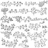 Vector Vines Design Element Set. A set of retro vine design elements royalty free illustration