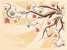 Vector vintage autumn leaves background Stock Photos