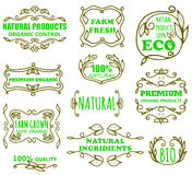 Vector vintage badges for eco products. Vector set of vintage badges and monogram for eco products royalty free illustration