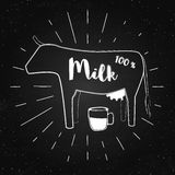 Vector vintage banner with cow and inscription - 100 percent milk on the chalkboard. Stock Photo