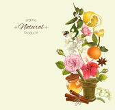 Vector vintage banner. Vector herbal vertical banner with mortar , fruits flowers and honey. Design for tea, juice, natural cosmetics, baking,candy and sweets royalty free stock photography