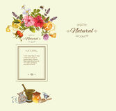 Vector vintage banner. Vector herbal vertical banner with mortar , fruits flowers and honey. Design for tea, juice, natural cosmetics, baking,candy and sweets royalty free stock photo