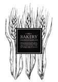 Vector vintage bread and bakery illustration. Hand drawn banner. Stock Photo