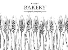 Vector vintage bread and bakery illustration. Hand drawn banner. Royalty Free Stock Photography