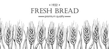 Vector vintage bread and bakery illustration. Hand drawn banner. Stock Image