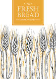Vector vintage bread and bakery illustration. Hand drawn banner. Royalty Free Stock Photo