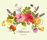 Vector vintage composition. Vector natural composition with hibiscus flowers, citrus fruits and rose hip. Design for tea, juice, natural cosmetics, baking,candy stock images