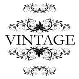 Vector vintage decor Royalty Free Stock Photos