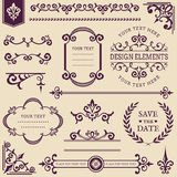 Vector vintage design elements. Royalty Free Stock Image