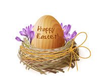 Vector vintage Easter egg in a wicker nest Stock Images