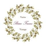 Vector vintage eglantine frame. Vector round frame with the briar (brier). Vector delicate eglantine frame. Vintage template card. Save the date vector circular Stock Photos