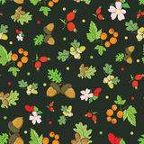 Vector Vintage Fall Berries Nuts on Dark Green Royalty Free Stock Photography