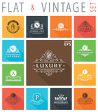 Vector vintage flat elements icons collection Royalty Free Stock Photo