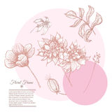 Vector Vintage floral background designset Stock Photography